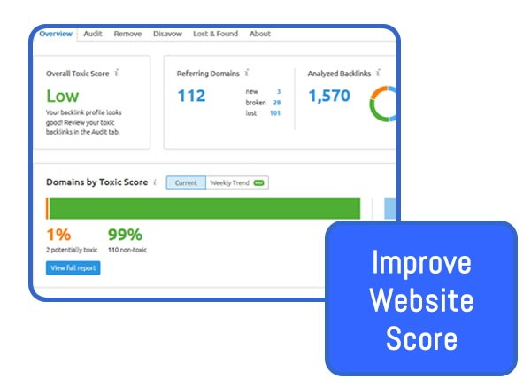 SEOservices.cc Improve Website Score